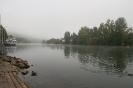 Der Fluss bei Wertheim