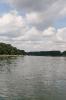 Der Fluss Rhein