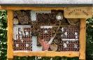 Insekten Haus