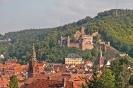 Burg von Wertheim