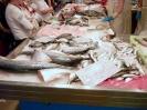 Fische auf dem Fischmarkt