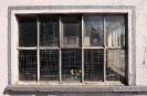 Glas Fenster