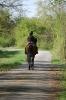 Junge Reiterin auf einem Pferd